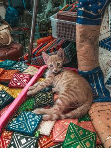 Marocké kožené výrobky a na nich krásavica