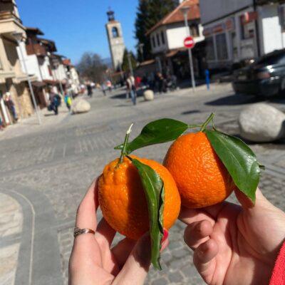 Najlepšie mandarinky (alebo pomaranče, stále neviem)