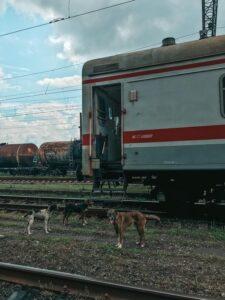 Zastavený vlak a okolo neho fešáci