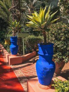 Kochlíky farby Majorelle blue